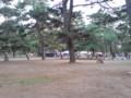 公園がのどか過ぎて和む…