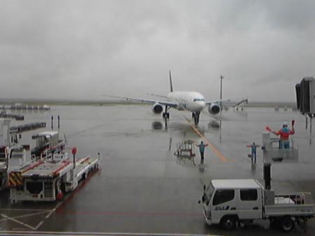 羽田空港は雨…。