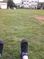 芝生でかしゅり