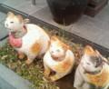 cats stone obje in Harajuku street.