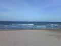 大平洋なう