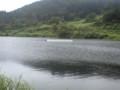 津南町エリアにはかわや湖がある。芸術だけでなく自然にも目が行きま