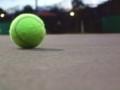 久しぶりにテニスした。足が棒(_ _;)