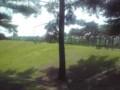GRASSへと続く道の列が凄まじい。向こうでは9mm Parabellum Bulletのステージ