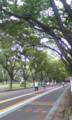 部活動@駒沢公園