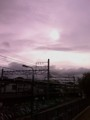 夕方のお散歩。薄曇り。