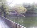 鹿沼公園なう