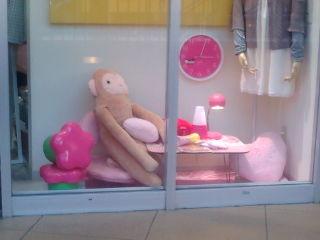この猿が家に欲しい