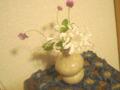 久しぶりにお花を飾りました☆エリリンからもらった花瓶 いい感じデ