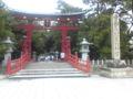 敦賀なう。写真は気比神社の大鳥居。