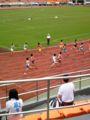 高校陸上競技大会@駒沢、なう。一瞬の風になれ!