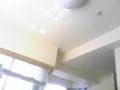 天井から蜘蛛が降りて来た。鳥肌。