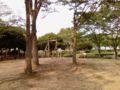 公園で子供たちと遊んでナウ