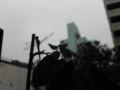 東京地方曇り後雨。昨日のトンボ二匹共まだ寝てる。