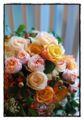 もう一つのお花の画像。先生撮影。ニコンのいいカメラらしい。こんな