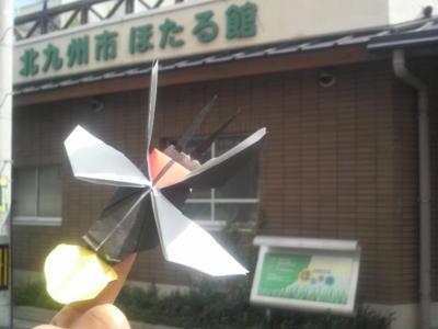 ホタル館にて折り紙教室。イマココ! L:福岡県北九州市小倉北区熊谷1
