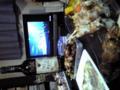 DVD鑑賞会&友達のお誕生会。やっとライブDVD買ったぜい。