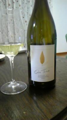 今日のワイン。ONE TREE HAWKES BAY CHARDONAY コスパ最高でした。