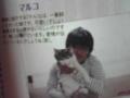 祐介と猫③