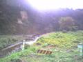 渓流にて ヤマセミの営巣地発見
