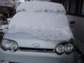 雪を冠ったムーヴ君。先ほど雪下ろし完了!今は晴れて暖かいから、ほ