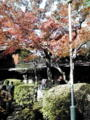 #dnu ホコウ燿輝荘。