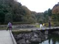 池の色がドリフみてーだ