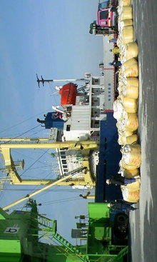 今日はカンボジア船で船長はチャイニーズマフィアみたいなヒト。