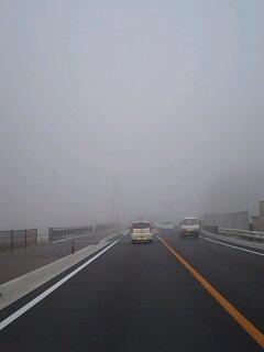 霧が凄くて前が見えねぇ