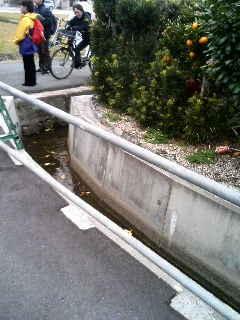 直角に曲がる川。角度怪しい