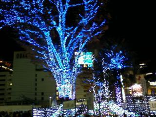 新宿東口のイルミネーション