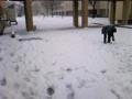 講義棟を抜けるとそこは雪国でした的な写真