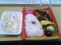 今日のお昼は、鎌倉屋の日替わり弁当とマカロニサラダ。