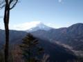 道志の鳥ノ胸山に来ました。