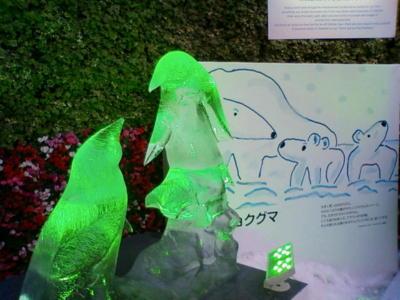旭山動物園の氷のペンギンが銀座に