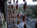 嫁さんの実家。干し柿だ〜。僕は苦手です。