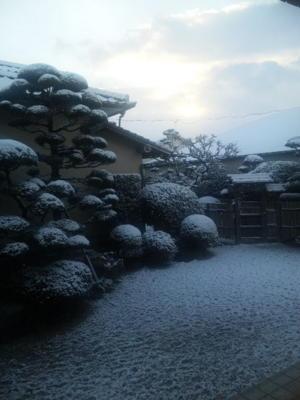 福岡、雪!