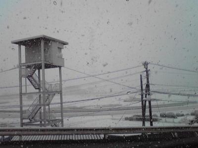 雪に埋もれる競馬場