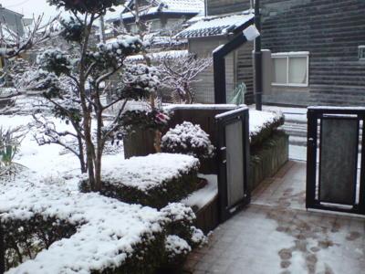 実家の庭先。大雪だねぃ。