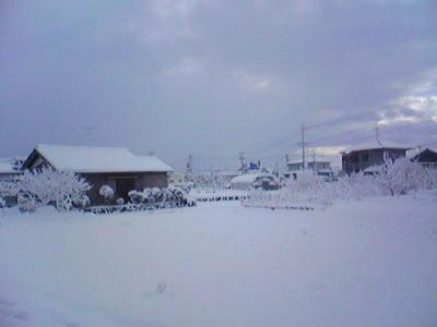 妹に写メ転送させた。雪景色ハンパないわ!
