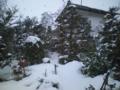 庭見たら雪がっ!今日でかけたかったのに!