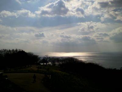 正月の相模灘です。
