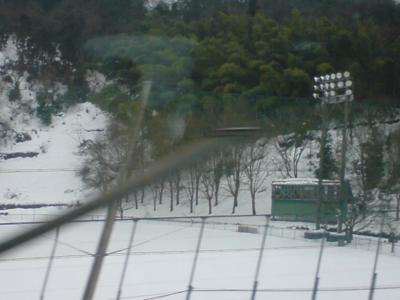 名古屋過ぎ。雪だ!