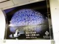 リゾナーレの中吊り広告がリニューアルされた☆素敵だー!!