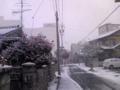 名古屋むっちゃ雪なう。