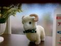 羊がおりました