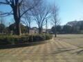 近所の公園で日光浴なう