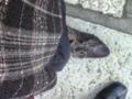 久々のブーツ(^3^) 頑張れ私の足!(笑)