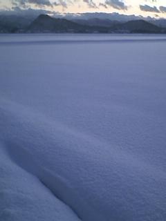 雪原・・・ あ、田んぼです