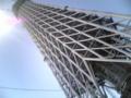 みてきた!。第2東京タワーかっこよろしいな!